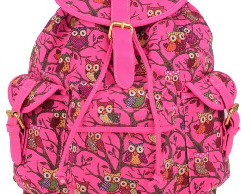 pink rucksacks, edsfashions.co.uk