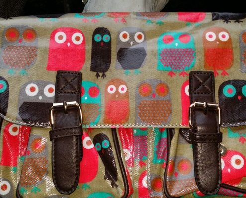 BIGOWL-Handbags1
