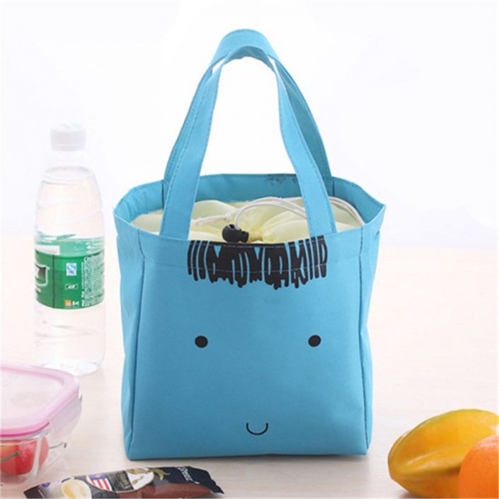 Colorful Portable Travel Picnic Lunch Waterproof Insulated Thermal Cooler Bags