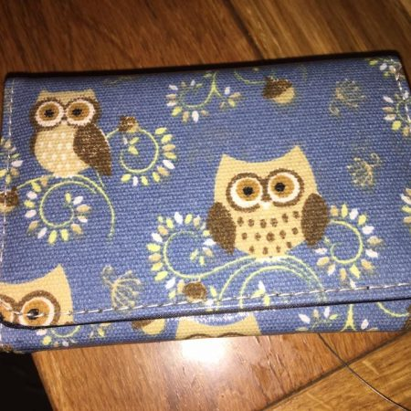 blue-brown-owl-purse