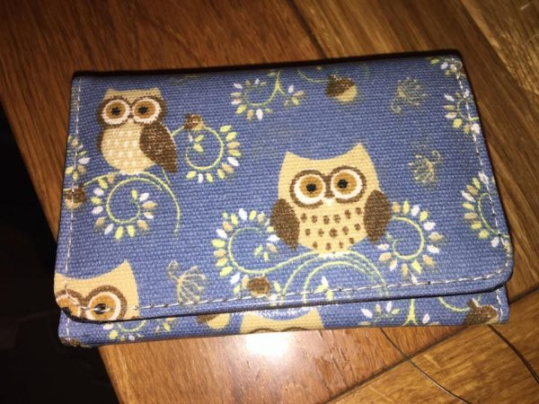 blue-brown-owl-purse